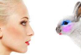 animal testing ban