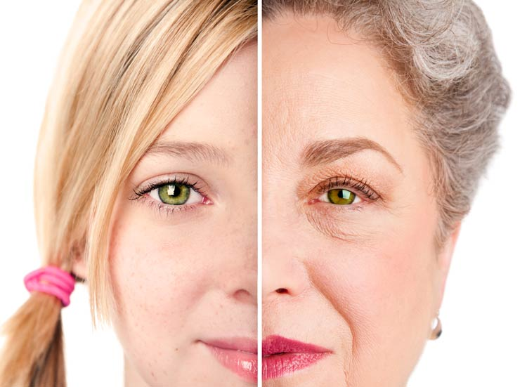 dhea side effects to aging