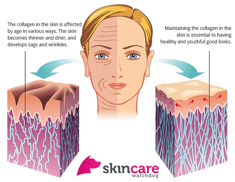 what-happens-to-skin-when-we-get-older-collagen